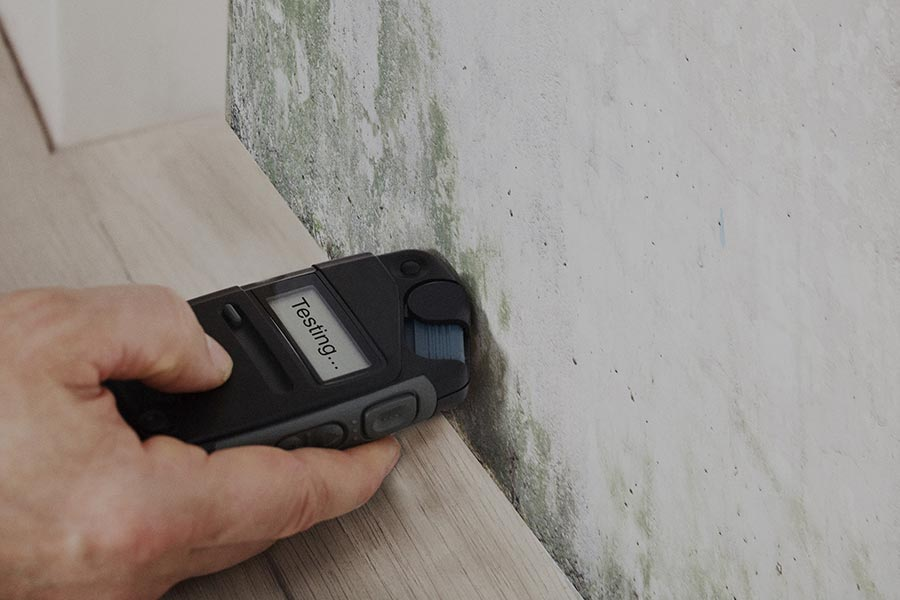 Testing for Mould Contamination